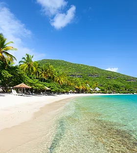 Tropical Island.webp