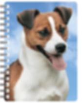 29577-sfa-3d-book-nb020-1.jpg