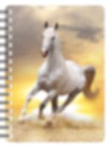 white-horse-at-sunset-nb217.jpg