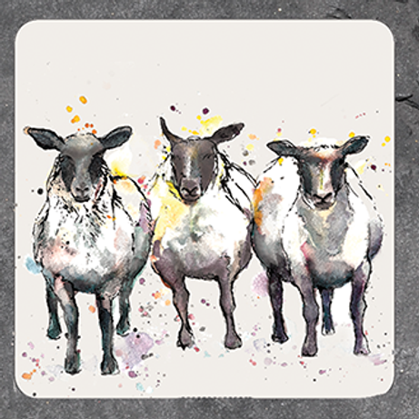 Sheep Coaster