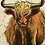 Thumbnail: Highland Cow Coaster