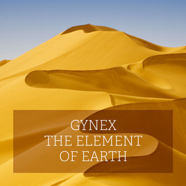 368_Gynex_EN.jpg