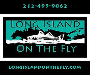 Long Island on the Fly.jpg