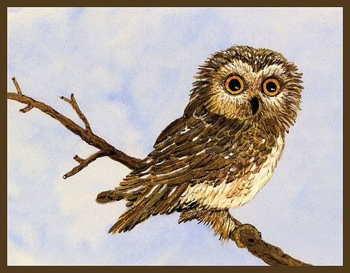 What OWL CROP 2 BORDER.jpg