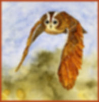 Tawny Owl in Flight w border.jpg