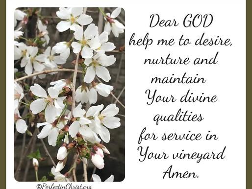DIVINE QUALITIES FOR KINGDOM SERVICE