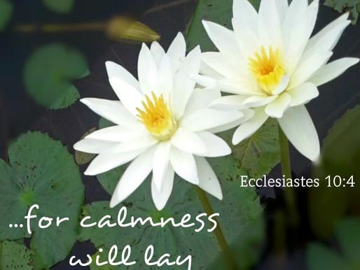 THE POWER OF CALMNESS