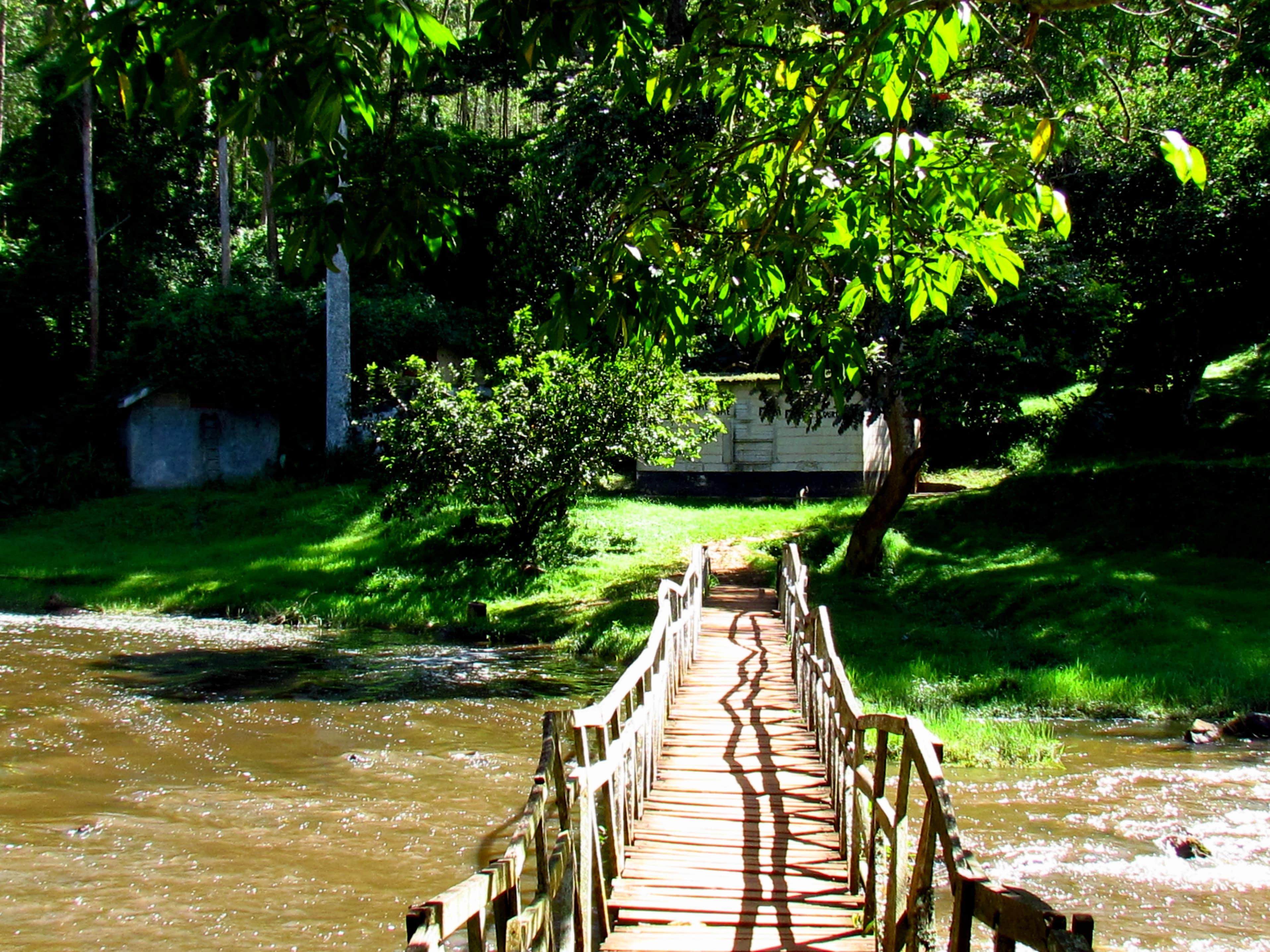 bridge-min