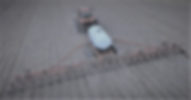 drone lite.PNG