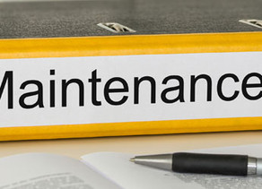 Maintenance of Elements for Hybrid Firms Please Read
