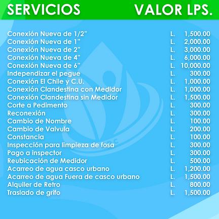 SERVICIOS VARIOS (1).png