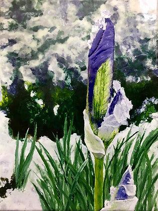 Print - Spring Snow Storm
