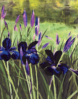 Print - Russian Iris