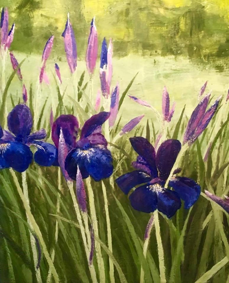 Russian Iris