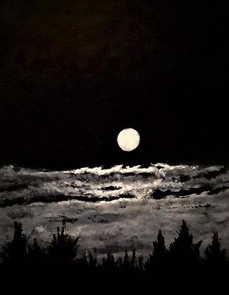 Reflections: Moon Dance