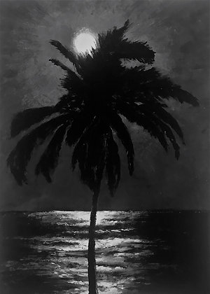 Reflections: Moonlight and Palm Tree
