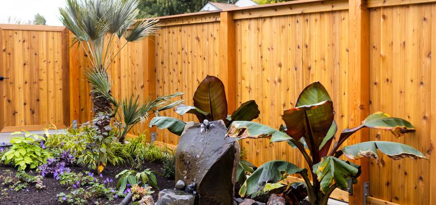 Magnolia (Low Res) (3).jpg