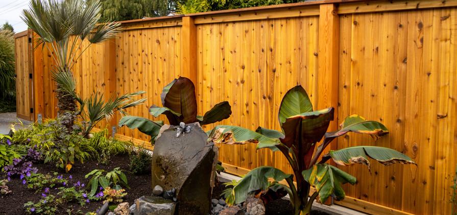 Magnolia (Low Res) (27).jpg