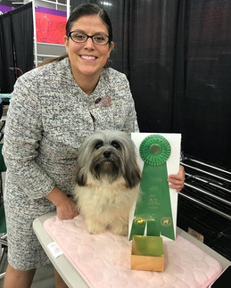 Freya received an Award of Merit today a