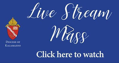 Live Stream Mass Video.JPG