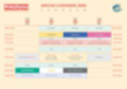 AMiCUS 2020 Program.jpg