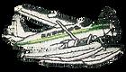 Talon Air Logo N253TA