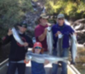 Sockeye Salmon Alaska