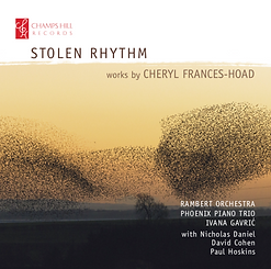 Stolen Rhythm.png