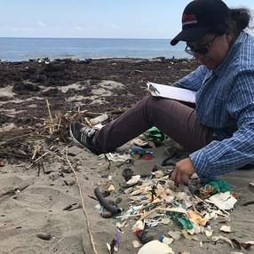 Nuestra investigación sobre los desechos