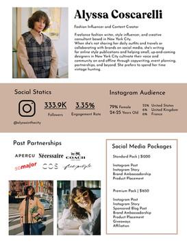 Influencer Media Kit Sample