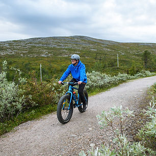 laplanddream_Biking_Pallas_National_park