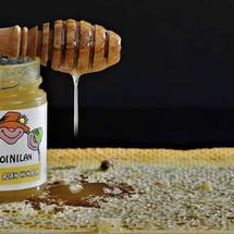 Soinilan hunaja