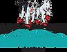 Team-Maglelin-Ky-logo-col.png