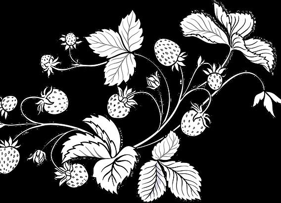 Portaaperä mansikkapiirros