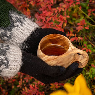 laplanddream_A-hot-drink_trekking_Discov