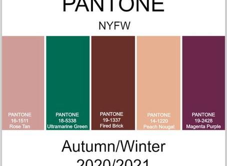 Couleurs d'automne et teintes de l'hiver