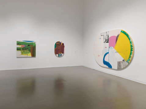 Installation view of Entangled: Two Views on Contemporary Canadian Painting, exhibition at the Vancouver Art Gallery, September 30, 2017 to January 1, 2018  Photo: Maegan Hill-Carroll, Vancouver Art Gallery