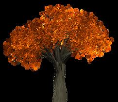 purepng.com-autumn-treenaturetreeautumn-