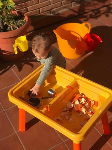 terrassa_pell mandarina.jpg