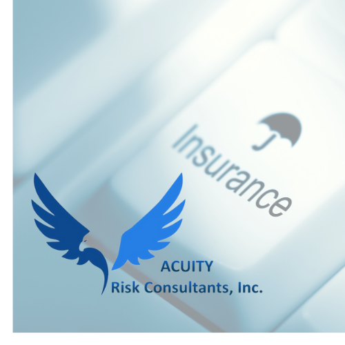 Acuity Risk Consultants, Inc.