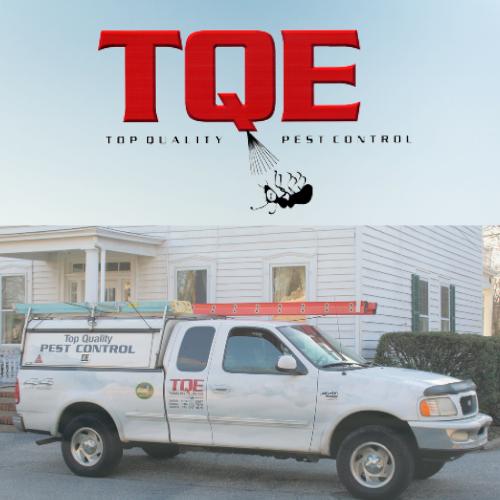 TQE Pest Control