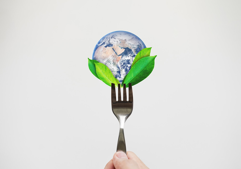how our food choices impact climate change, environmentally friendly diet
