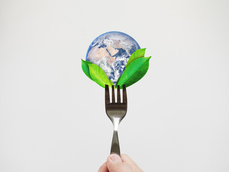 3 Ways Our Diet is Contributing to Climate Change