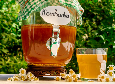 6 Tangy Kombucha Facts