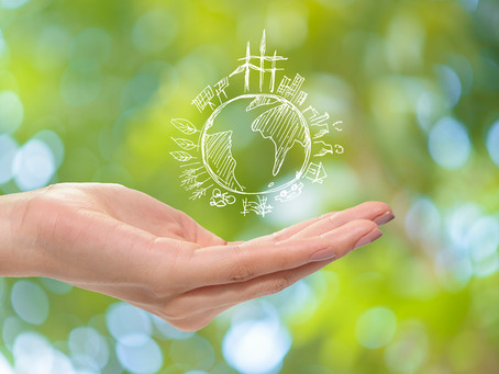 5 Easy Ways You Can Help the Environment