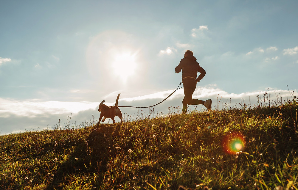 Individual jogging outdoors with dog on a leash. Amping up outdoor workout.