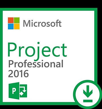 Microsoft office Project Professional 2016 1PC