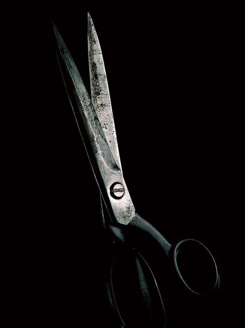 2_1_807_1scissors11_crop.jpg