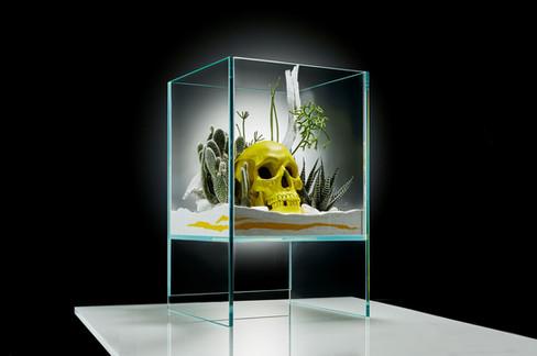 Yello-Skull_16x9--11.jpg