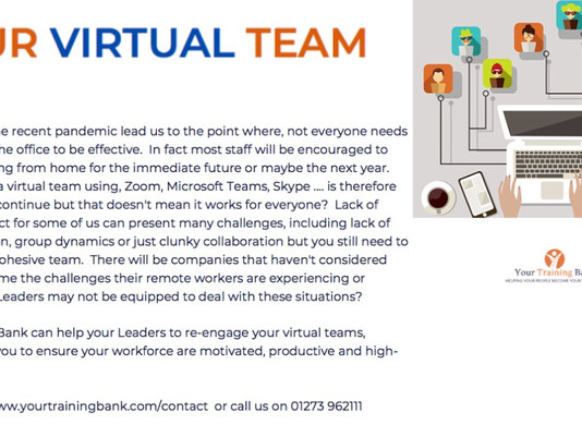Your Virtual Team